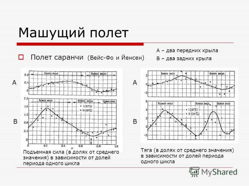 Машущий полет Полет саранчи (Вейс-Фо и Йенсен) A B A B А – два передних крыла В – два задних крыла Подъемная сила (в долях от среднего значения) в зависимости от долей периода одного цикла Тяга (в долях от среднего значения) в зависимости от долей пе