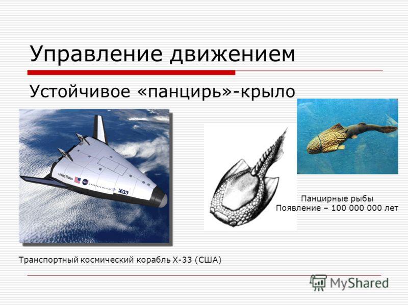 Управление движением Устойчивое «панцирь»-крыло Панцирные рыбы Появление – 100 000 000 лет Транспортный космический корабль Х-33 (США)