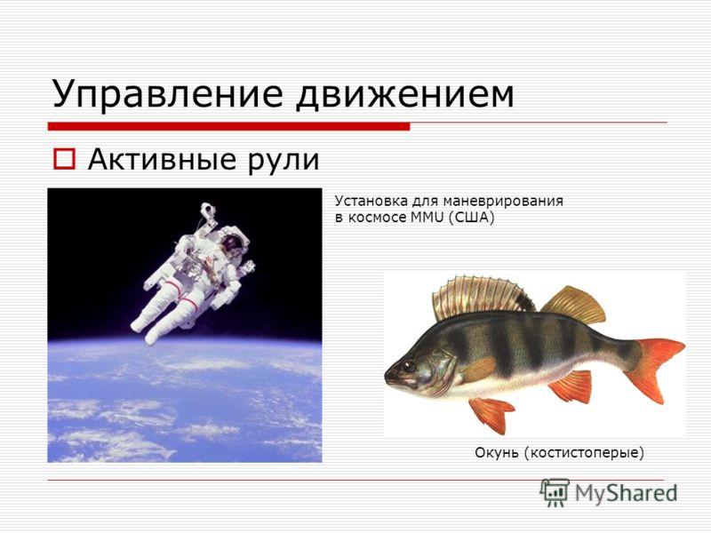 Управление движением Активные рули Окунь (костистоперые) Установка для маневрирования в космосе MMU (США)