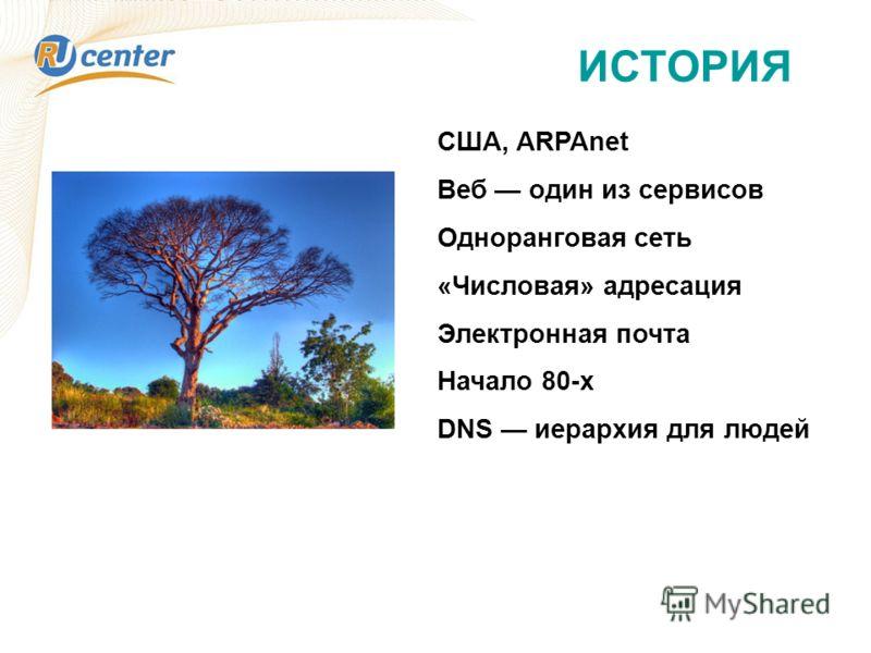 ИСТОРИЯ США, ARPAnet Веб один из сервисов Одноранговая сеть «Числовая» адресация Электронная почта Начало 80-х DNS иерархия для людей