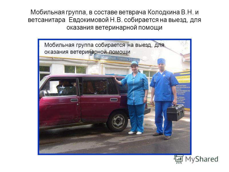 Мобильная группа, в составе ветврача Колодкина В.Н. и ветсанитара Евдокимовой Н.В. собирается на выезд, для оказания ветеринарной помощи Мобильная группа собирается на выезд, для оказания ветеринарной помощи
