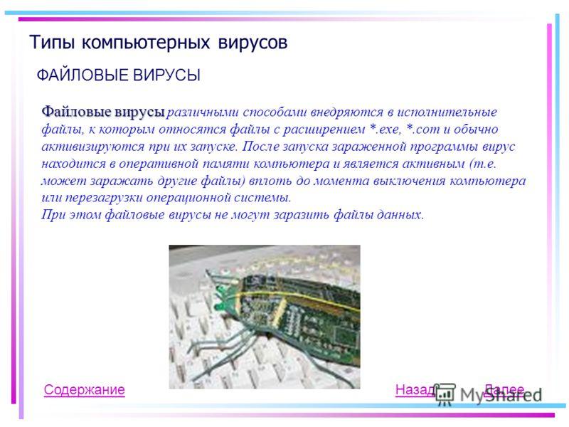 Типы компьютерных вирусов ФАЙЛОВЫЕ ВИРУСЫ Содержание Файловые вирусы Файловые вирусы различными способами внедряются в исполнительные файлы, к которым относятся файлы с расширением *.exe, *.com и обычно активизируются при их запуске. После запуска за