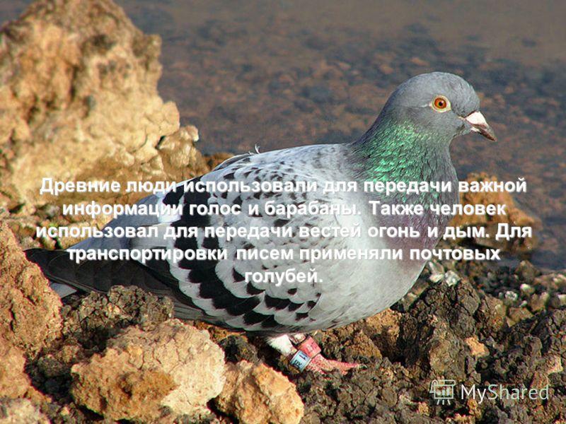 Древние люди использовали для передачи важной информации голос и барабаны. Также человек использовал для передачи вестей огонь и дым. Для транспортировки писем применяли почтовых голубей.