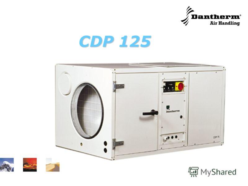 CDP 125