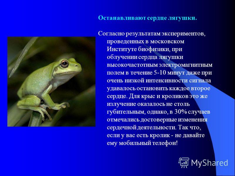 Останавливают сердце лягушки. Согласно результатам экспериментов, проведенных в московском Институте биофизики, при облучении сердца лягушки высокочастотным электромагнитным полем в течение 5-10 минут даже при очень низкой интенсивности сигнала удава