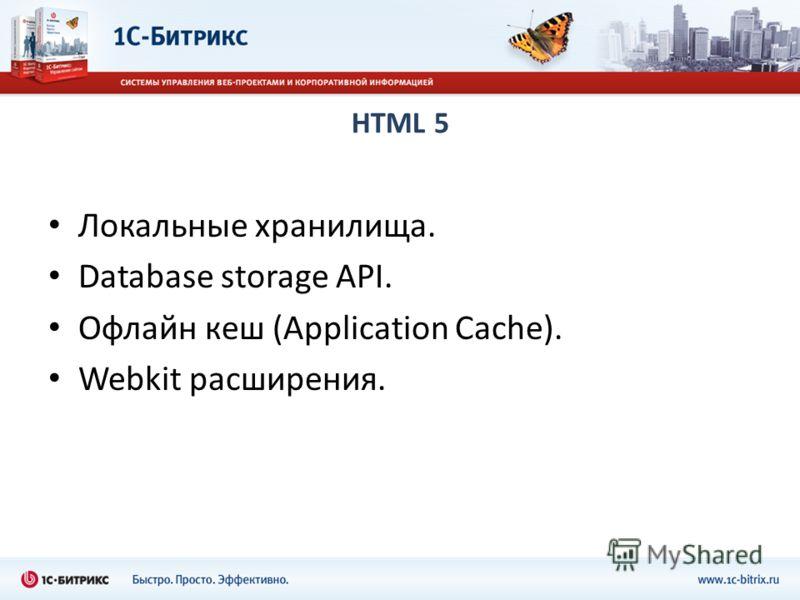 HTML 5 Локальные хранилища. Database storage API. Офлайн кеш (Application Cache). Webkit расширения.