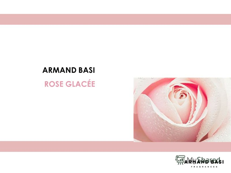 ARMAND BASI ROSE GLACÉE