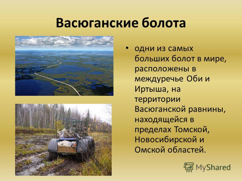 Васюганские болота одни из самых больших болот в мире, расположены в междуречье Оби и Иртыша, на территории Васюганской равнины, находящейся в пределах Томской, Новосибирской и Омской областей.