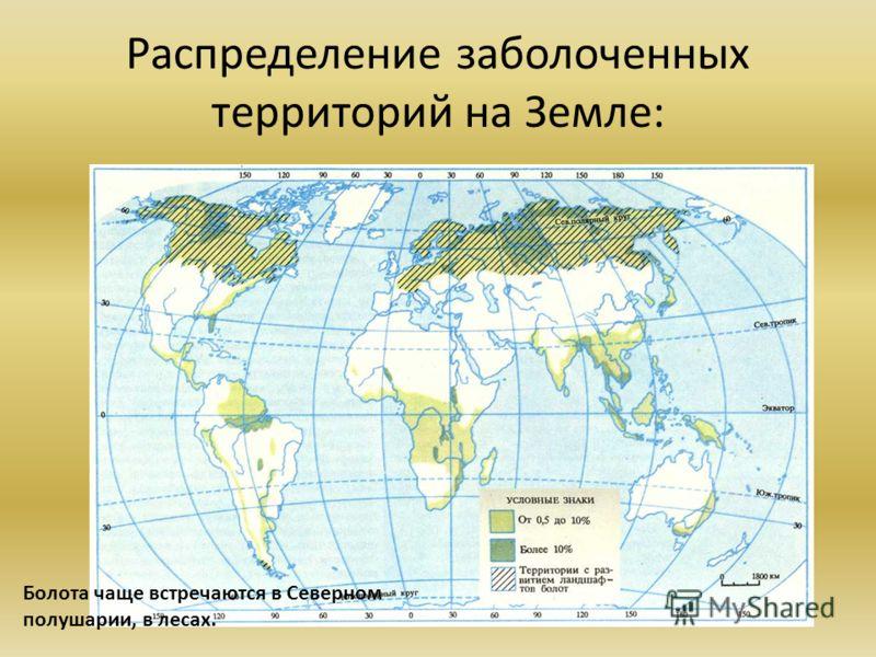 Распределение заболоченных территорий на Земле: Болота чаще встречаются в Северном полушарии, в лесах.