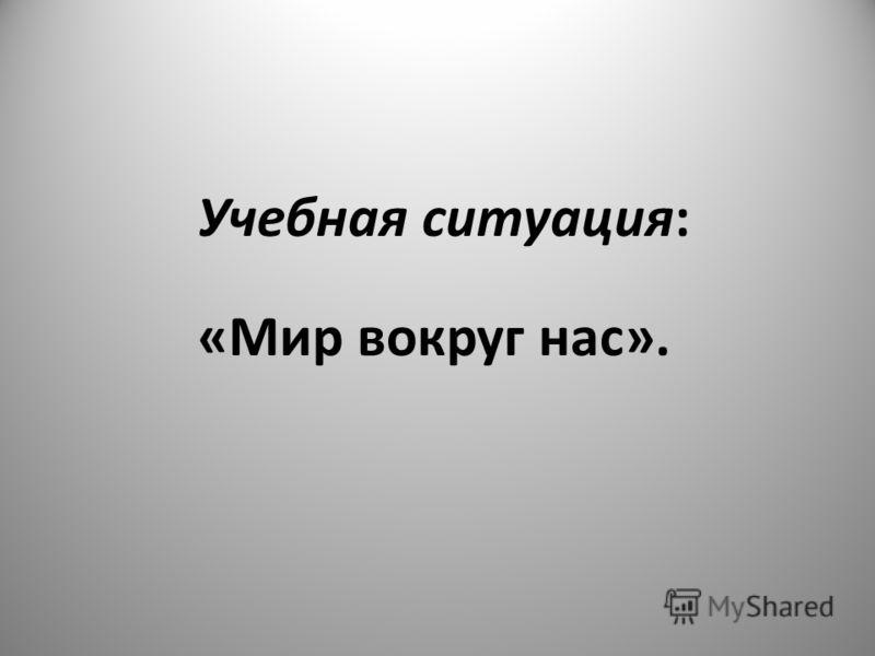 Учебная ситуация: «Мир вокруг нас».