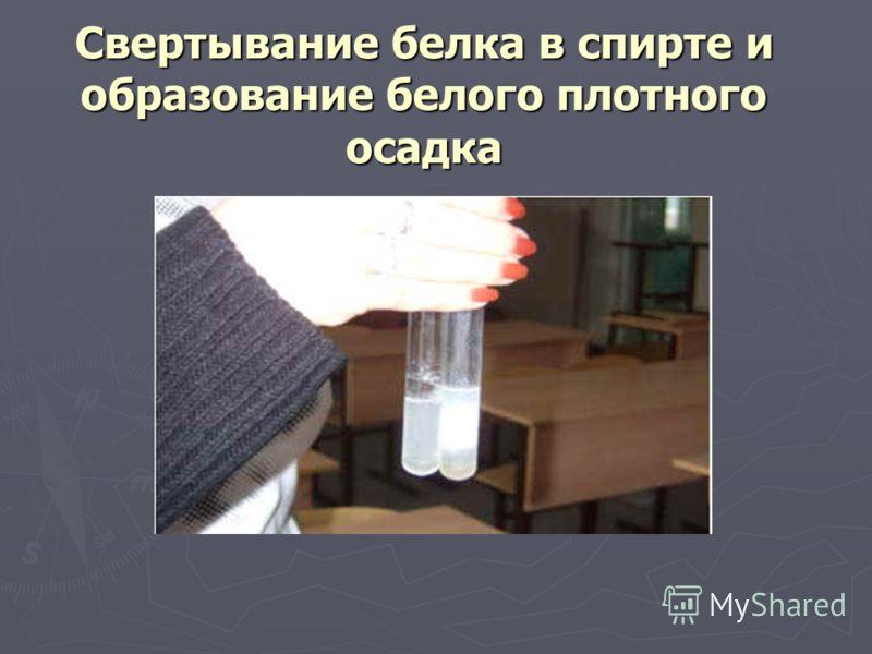 Свертывание белка в спирте и образование белого плотного осадка
