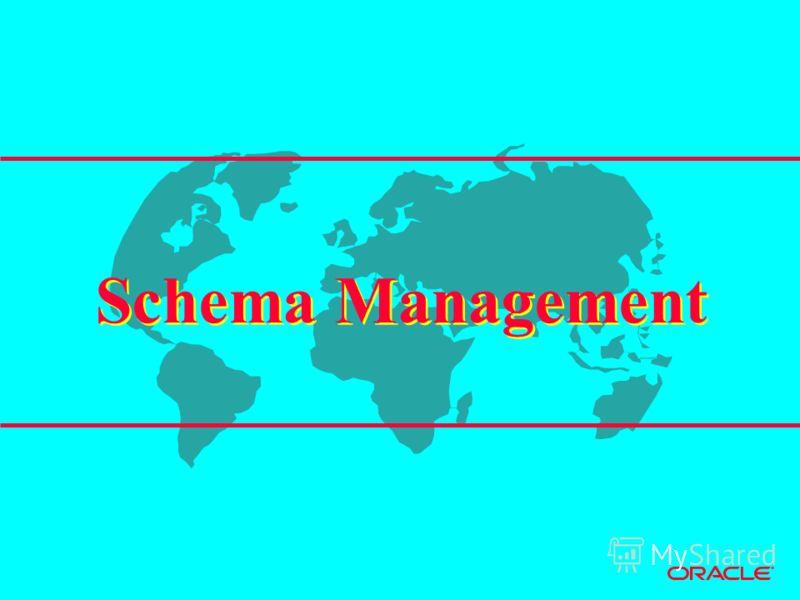 Schema Management