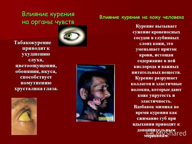 Влияние курения на органы чувств Табакокурение приводит к ухудшению слуха, цветоощущения, обоняния, вкуса, способствует помутнению хрусталика глаза. Влияние курения на кожу человека Курение вызывает сужение кровеносных сосудов в глубинных слоях кожи,