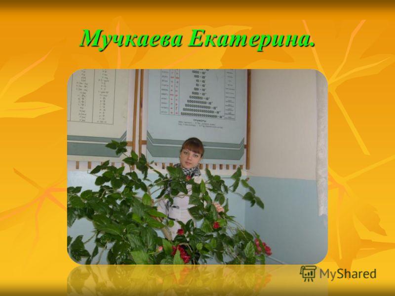 Мучкаева Екатерина.
