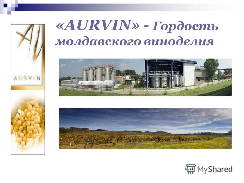 «AURVIN» - Гордость молдавского виноделия