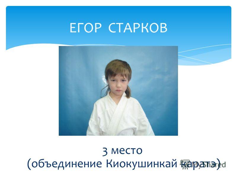 ЕГОР СТАРКОВ 3 место (объединение Киокушинкай каратэ)