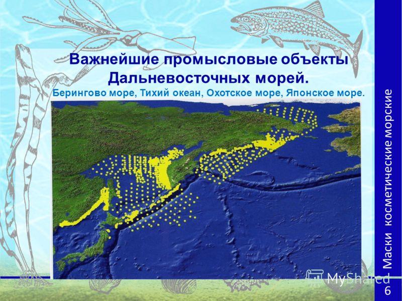 Важнейшие промысловые объекты Дальневосточных морей. Берингово море, Тихий океан, Охотское море, Японское море. Маски косметические морские 6