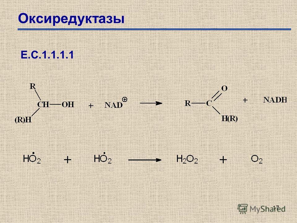 17 Оксиредуктазы Е.С.1.1.1.1