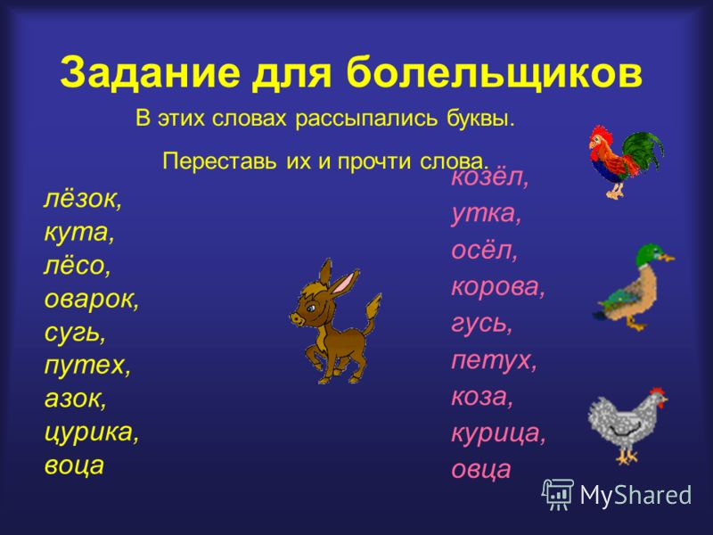 Задание для болельщиков лёзок, кута, лёсо, оварок, сугь, путех, азок, цурика, воца В этих словах рассыпались буквы. Переставь их и прочти слова. козёл, утка, осёл, корова, гусь, петух, коза, курица, овца