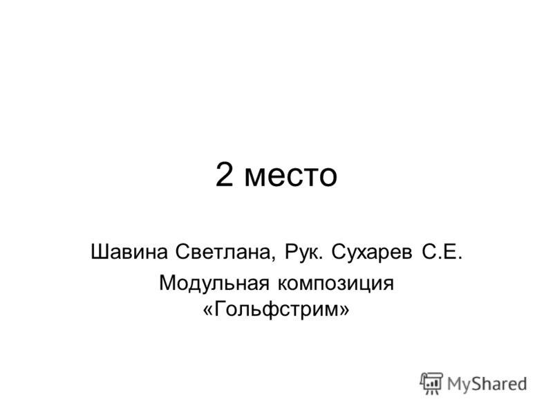 2 место Шавина Светлана, Рук. Сухарев С.Е. Модульная композиция «Гольфстрим»