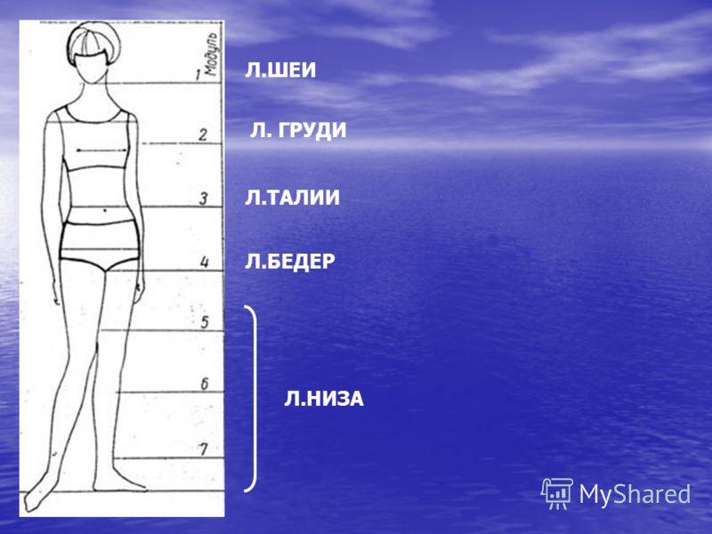 Л.ШЕИ Л. ГРУДИ Л.ТАЛИИ Л.БЕДЕР Л.НИЗА