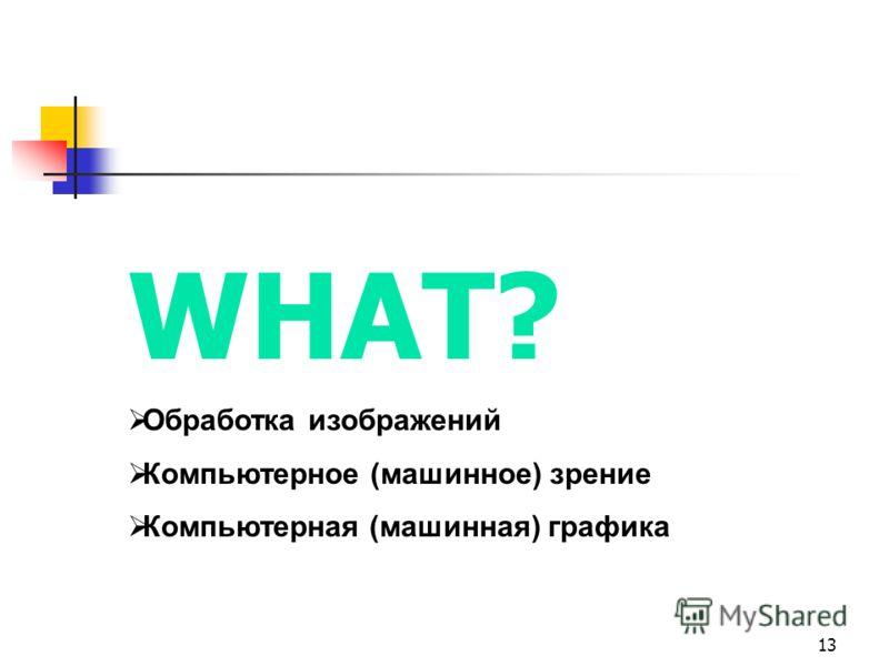 13 WHAT? Обработка изображений Компьютерное (машинное) зрение Компьютерная (машинная) графика