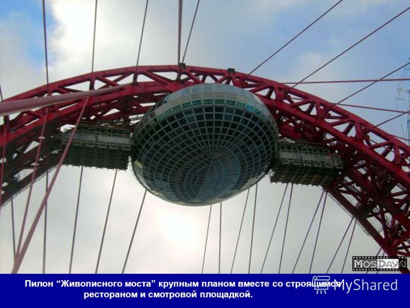 Хорошево-Мневники, Живописный мост.