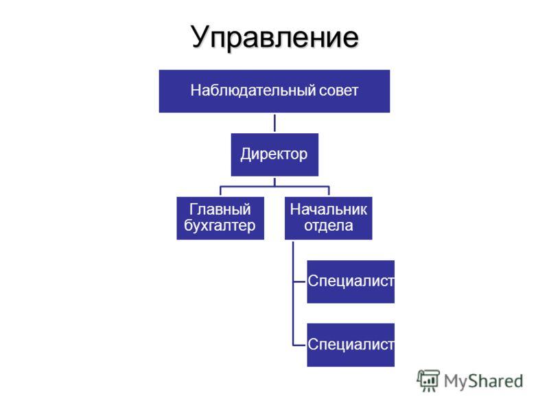 Управление Наблюдательный совет Директор Главный бухгалтер Начальник отдела Специалист
