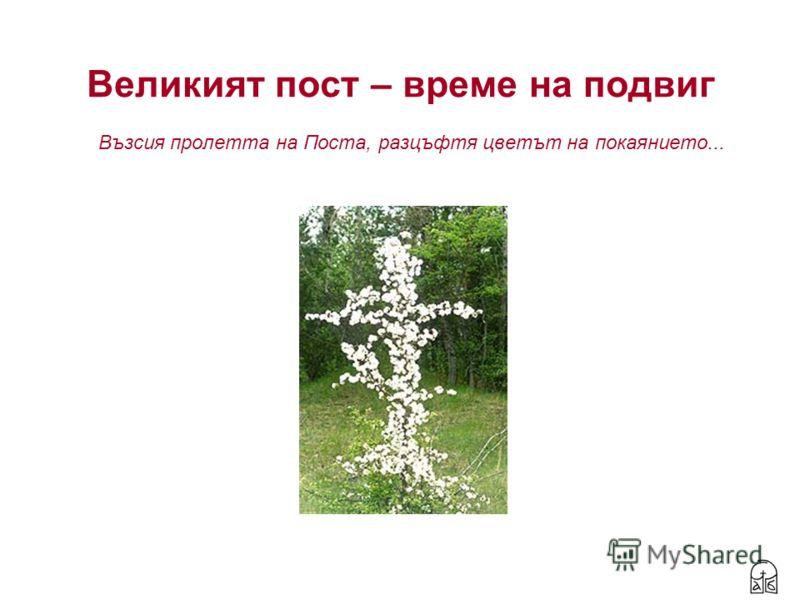 Великият пост – време на подвиг Възсия пролетта на Поста, разцъфтя цветът на покаянието...
