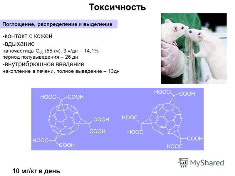 Токсичность Поглощение, распределение и выделение -контакт с кожей -вдыхание наночастицы С 60 (55нм), 3 ч/дн – 14,1% период полувыведения – 26 дн -внутрибрюшное введение накопление в печени, полное выведение – 13дн 10 мг/кг в день