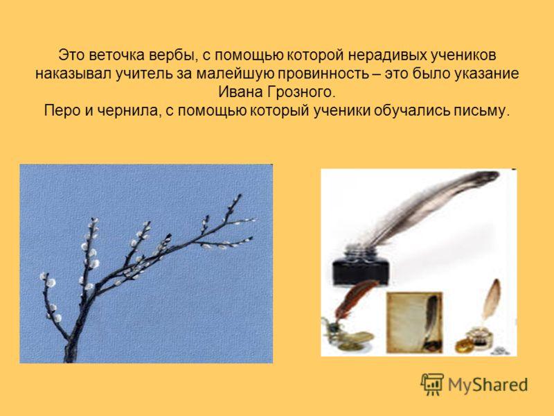 Это веточка вербы, с помощью которой нерадивых учеников наказывал учитель за малейшую провинность – это было указание Ивана Грозного. Перо и чернила, с помощью который ученики обучались письму.