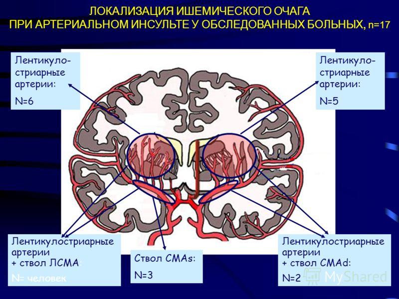 ТРОМБОФИЛИИ ПЕРВИЧНЫЕ -генетически обусловленная склонность к тромбообразованию: мутации (полиморфизмы) в генах факторов свертывающей и противосвертывающей систем крови; ВТОРИЧНЫЕ -склонность к тромбообразованию при: беременности; родах сепсисе; дисс