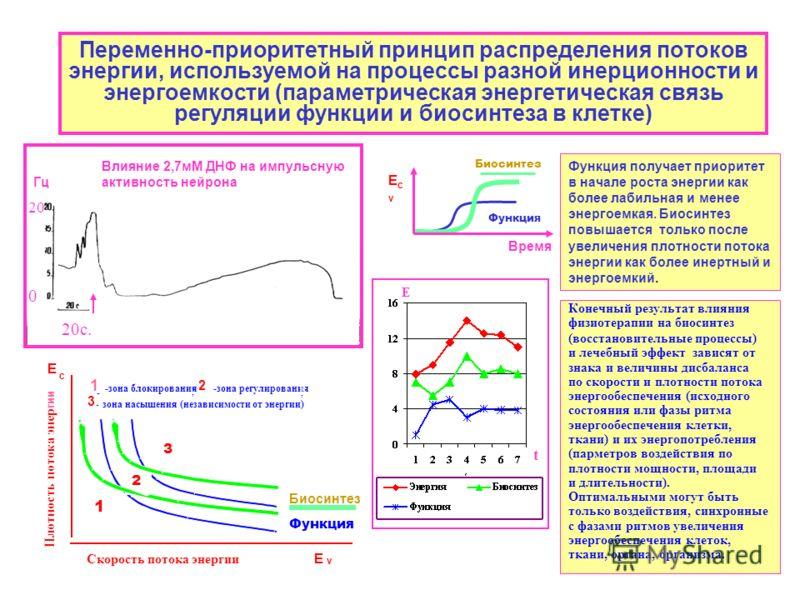 Переменно-приоритетный принцип распределения потоков энергии, используемой на процессы разной инерционности и энергоемкости (параметрическая энергетическая связь регуляции функции и биосинтеза в клетке) Влияние 2,7мМ ДНФ на импульсную активность нейр