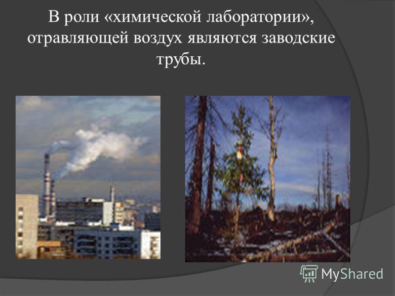 В роли «химической лаборатории», отравляющей воздух являются заводские трубы.