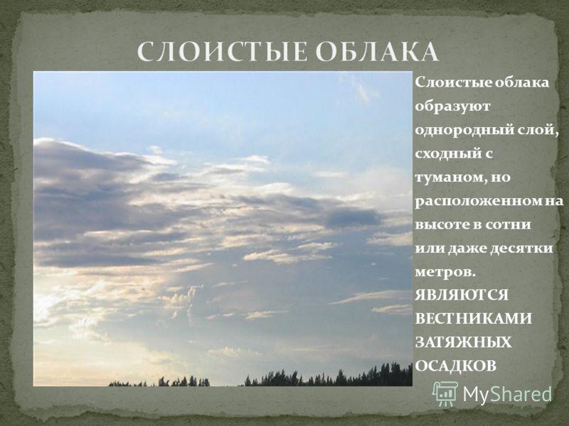 Слоистые облака образуют однородный слой, сходный с туманом, но расположенном на высоте в сотни или даже десятки метров. ЯВЛЯЮТСЯ ВЕСТНИКАМИ ЗАТЯЖНЫХ ОСАДКОВ