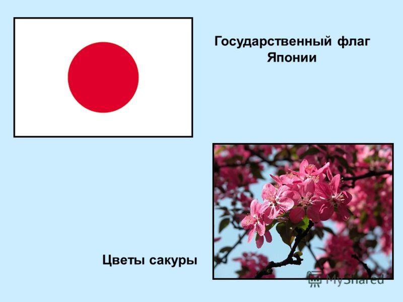 Государственный флаг Японии Цветы сакуры