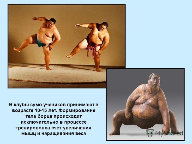 В клубы сумо учеников принимают в возрасте 10-15 лет. Формирование тела борца происходит исключительно в процессе тренировок за счет увеличения мышц и наращивания веса