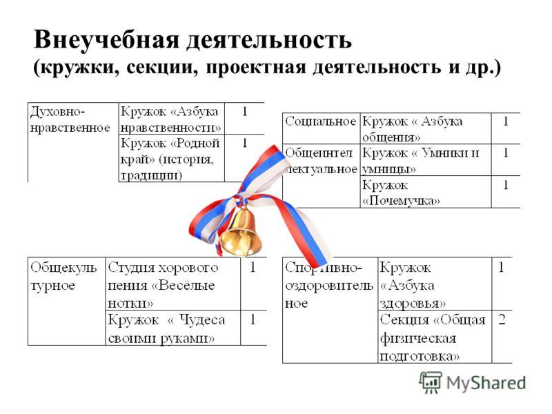 Внеучебная деятельность (кружки, секции, проектная деятельность и др.)