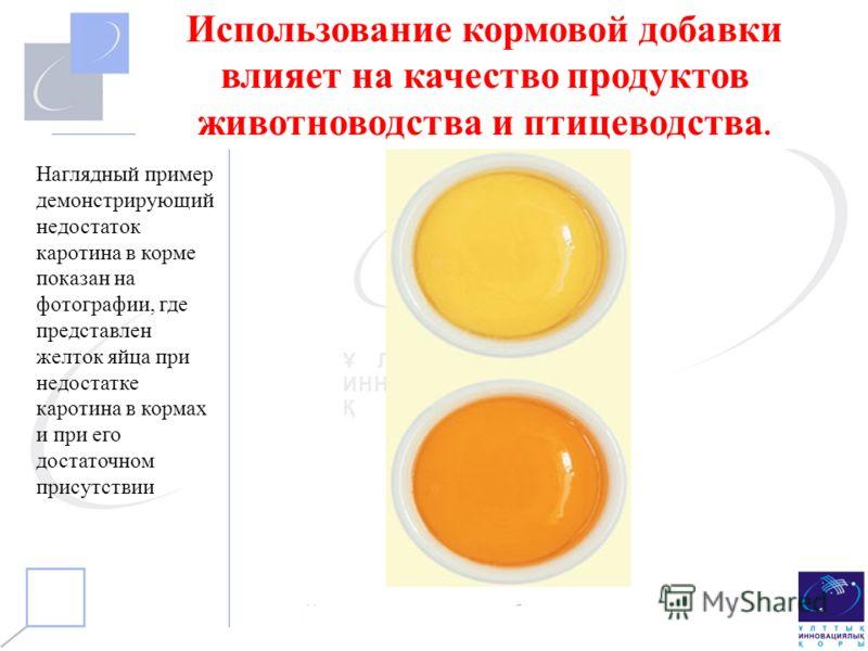 Использование кормовой добавки влияет на качество продуктов животноводства и птицеводства. Наглядный пример демонстрирующий недостаток каротина в корме показан на фотографии, где представлен желток яйца при недостатке каротина в кормах и при его дост