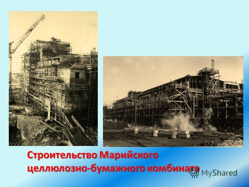 Строительство Марийского целлюлозно-бумажного комбината