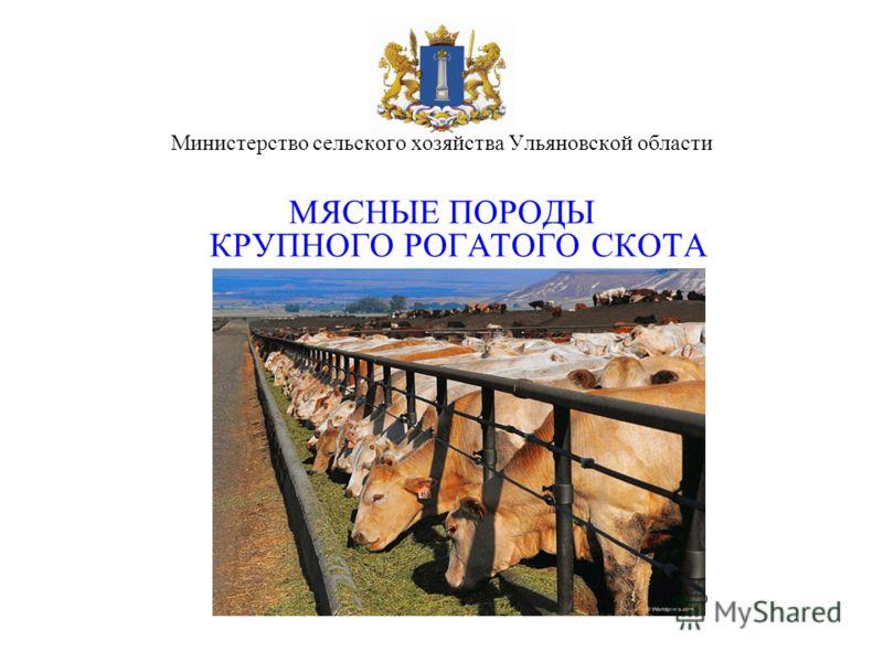 Министерство сельского хозяйства Ульяновской области МЯСНЫЕ ПОРОДЫ КРУПНОГО РОГАТОГО СКОТА