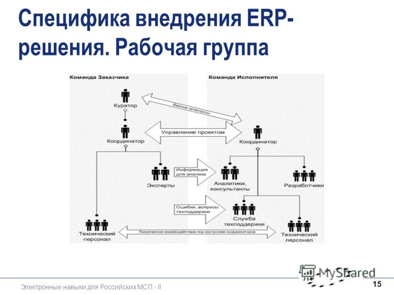 Электронные навыки для Российских МСП - II 15 Специфика внедрения ERP- решения. Рабочая группа