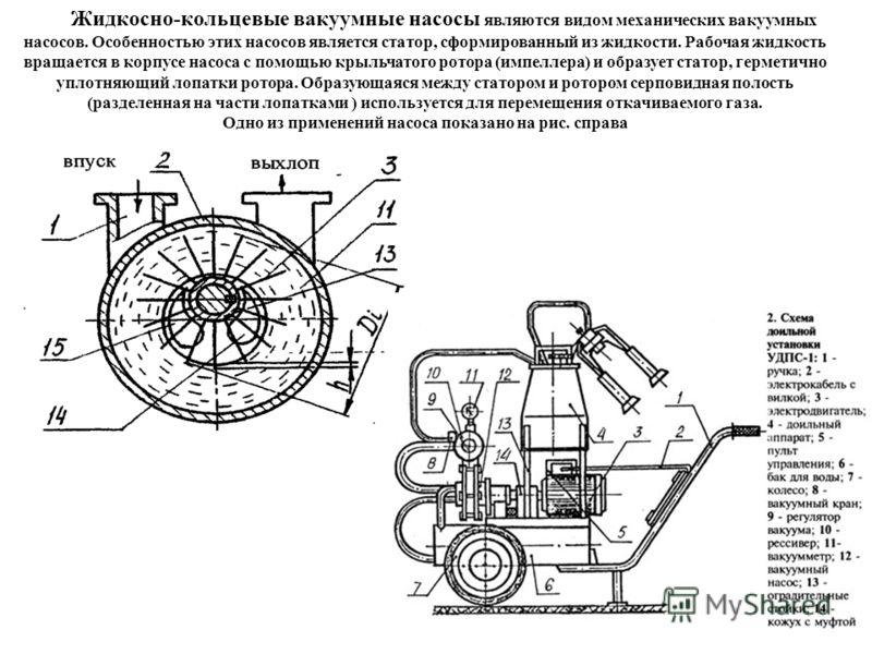 Жидкосно-кольцевые вакуумные насосы являются видом механических вакуумных насосов. Особенностью этих насосов является статор, сформированный из жидкости. Рабочая жидкость вращается в корпусе насоса с помощью крыльчатого ротора (импеллера) и образует