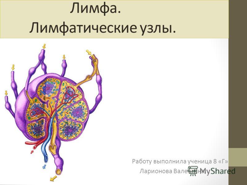 Работу выполнила ученица 8 «Г» Ларионова Валентина. Лимфа. Лимфатические узлы.