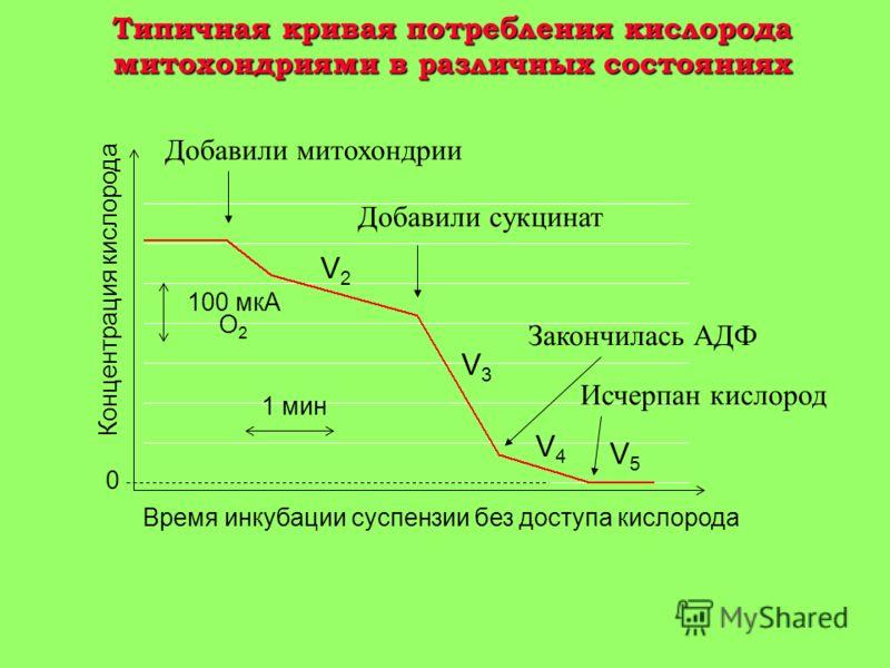 Влияние ингибиторов фосфолипазы А 2 на на накопление Ca 2+ и итактнссть митохондрий