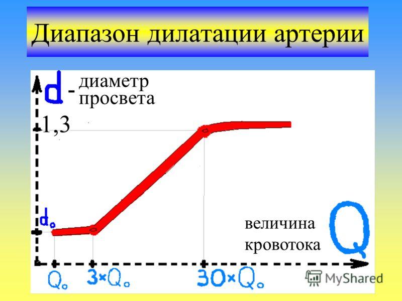 Диапазон дилатации артерии диаметр просвета величина кровотока 1,3