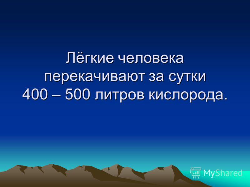 Лёгкие человека перекачивают за сутки 400 – 500 литров кислорода.