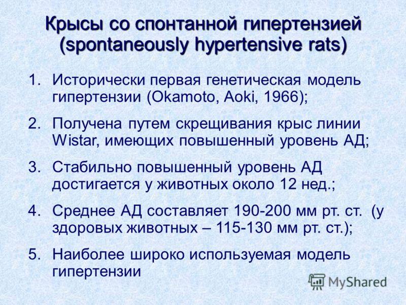 Крысы со спонтанной гипертензией (spontaneously hypertensive rats) 1.Исторически первая генетическая модель гипертензии (Okamoto, Aoki, 1966); 2.Получена путем скрещивания крыс линии Wistar, имеющих повышенный уровень АД; 3.Стабильно повышенный урове