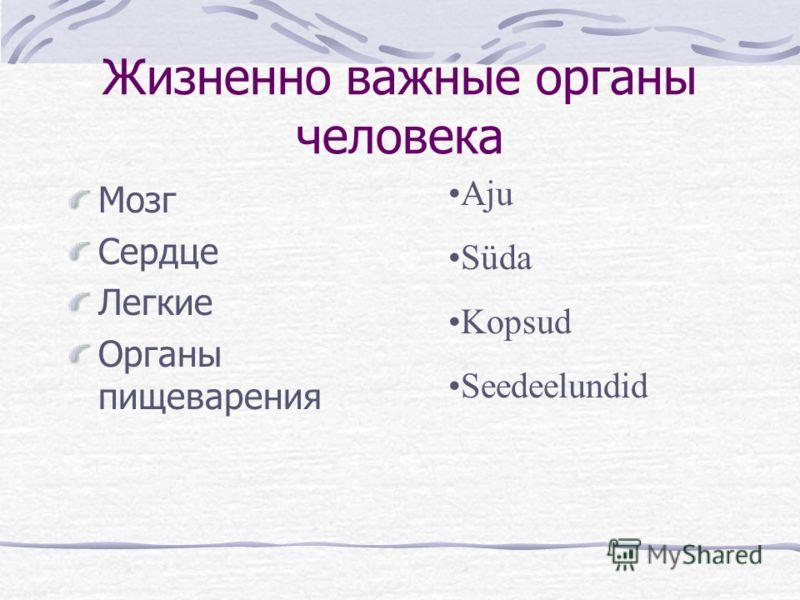 Minu keha Моё тело Предмет: человековедение 3 класс Составитель: Елена Егорова 2008