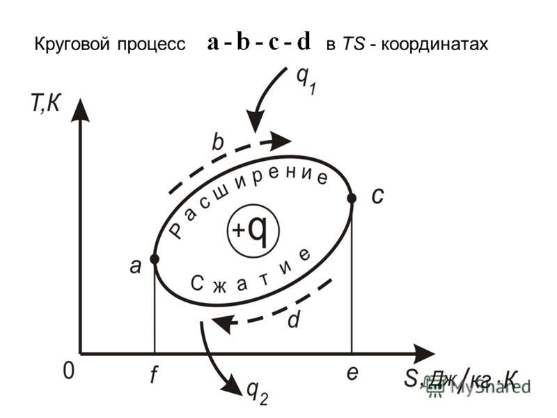 Круговой процесс в TS - координатах